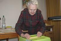 V G-centru volila i Marie Svobodová.