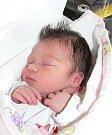 Josefína Novotná z Bechyně. Na svět poprvé pohlédla 23. února ve 14.27 hodin a je prvním dítětem rodičů Evy a Martina. Vážila 3380 gramů a měřila 49 cm.