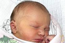 VERONIKA ŠNEKOVÁ Z OPAŘAN. Je prvním dítětem rodičů Anety a Jana. Narodila se 8. prosince ve 22.04 hodin, vážila 3330 g a měřila 49 cm.