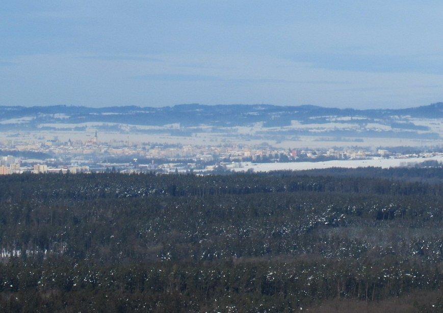 Váš další výlet může být třeba za daňky a na rozhlednu Čermákův vrch.