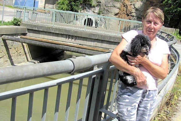 ŽIVOT V ÚDOLÍ POTOKA. Když neprší, je Tismenický potok téměř bez vody. Na jeho břehu žije Hana Novotná.