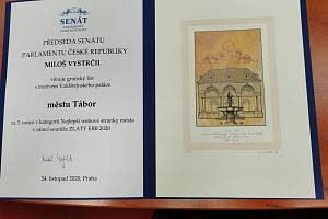 Web Tábora získal v celostátním kole soutěže Zlatý erb třetí místo.