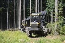 Správa lesů města Tábora nabádá návštěvníky lesů ke zvýšené opatrnosti při pobytu v lokalitě Strkov a Nechyba. Z důvodu intenzivní těžby dřeva napadeného kůrovcem je lepší se těmto částem lesů zcela vyhnout.