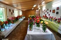 Vyrazte do táborské botanické zahrady na výstavu růží