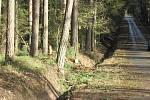 Od pondělního večera přibyly další škody i na Táborsku, v Plané nad Lužnicí orkán strhl fasádu bývalé herny, kolem řeky Lužnice směrem na Roudnou i v lese mezi Kvasejovicemi a Krotějovem jsou polámané a vyvrácené stromy.