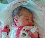 Sofie Strnadová z Malšic. Přišla na svět jako prvorozená dcera rodičů Martiny a Michala 5. května v 16.40 hodin. Po narození vážila 2920 gramů.