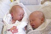 Mariana a Amálie Sachrovy z Tábora. První z dvojčátek se 29. července  dvě minuty před jedenáctou hodinou narodila Mariana (vlevo) a její váha byla  2500 gramů. O minutu později pak přišla na svět  Amálie s váhou 2660 gramů. Holčičky jsou  prvními dětmi r