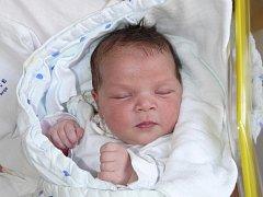 BARBORA MEZEROVÁ Z BECHYNĚ.  Sestřička Patrika (10) a Elišky (3,5) se narodila 24. dubna ve 22.39 hodin. Vážila 3550 g a měřila 48 cm.