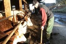 Fyzická práce Miloslavu Drhovskému nevadí. A navíc cítí závazky k dlouholeté tradici svého rodu. I proto se z Německa, vrátil na statek v Maršově, kde po svém otci převzal hospodářství. Dnes se řadí mezi nejlepší zemědělce v republice.