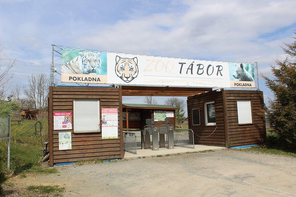 Zoo na jihu Čech otevřou brány návštěvníkům, připravuje se u táborská zoologická zahrada.