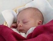 Elena Slámová. Poprvé na svět pohlédla 31. ledna devět minut po deváté hodině. Její váha po narození  byla 2560 gramů a míra 46 cm.