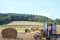 Sklizeň všech základních plodin s výjimkou řepky loni v Jihočeském kraji vzrostla. Na druhé straně však zemědělce trápí pokles živočišné výroby.