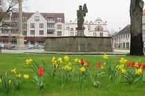 Město Soběslav zvítězilo v krajském kole soutěže o titul Historické město roku 2019.