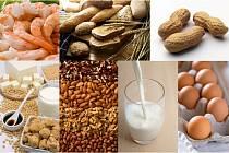 Alergeny v potravinách.