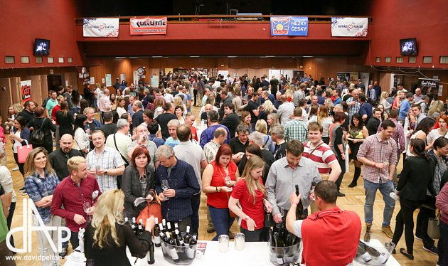 Festival vína do Tábora přiveze měsíc dobrot ikultury.