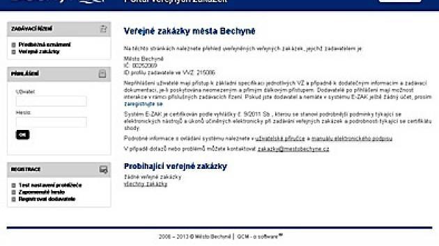 Na webové stránce www.mestobechyne.cz naleznete sekci veřejné zakázky.