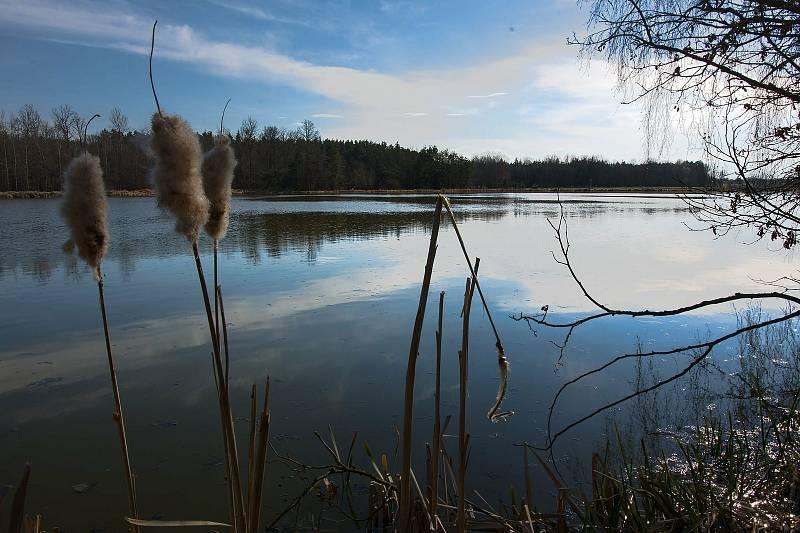 Krása přírody u Turoveckých rybníků a cestou na Kozí hrádek.
