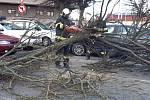Přestože se orkán Sabina přes Jihočeský kraj přehnal již v pondělí, práce na odklízení následků neustaly. V úterý 12. února evidovali jihočeští profesionální hasiči 48 událostí související s větrem.