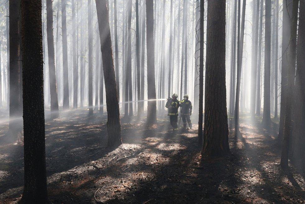 K požáru lesního porostu mezi obcemi Myslkovice a Brandlím na Táborsku byl povolán i policejní vrtulník.