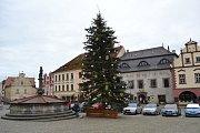 Vánoční strom letos na Žižkovo náměstí přicestoval z Větrov.