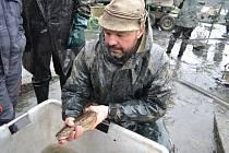 Rybáři v sobotu vylovili Košín u Tábora.