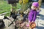 Tříleté Aničce Krejčí z Košic rodiče zpříjemnili Velikonoční pondělí hledáním obarvených vajíček po zahradě.