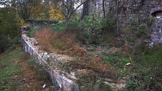 KDE STÁVALA KATOVNA. Příroda nemá ráda prázdné plochy, proto postupně zakrývá suť a odpadky.
