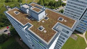 Záběry již hotové zelené střechy na sídlišti Nad Lužnicí a realizace rašelinového podkladu.