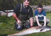Kolosální sumec, který se skrýval u dna rybníku Člunovec.