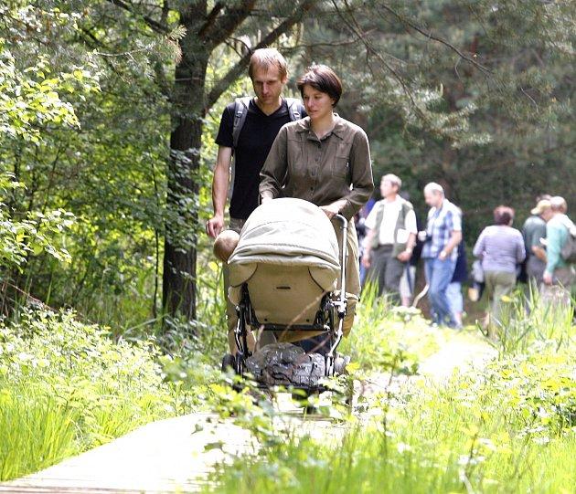 Přírodou krok za krokem se vydejte ve Veselí nad Lužnicí. Za obojživelníky na Borkovická blata s Davidem Fischerem mohou zájemci vyrazit v sobotu.