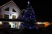 3. Vánoční strom v Plané nad Lužnicí.