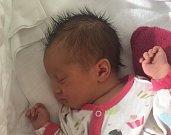 Olívie Lapešová z Plané nad Lužnicí.  Narodila se rodičům Ivetě a Honzovi 21. října ve 14.39 hodin. Vážila 4010 gramů, měřila 52 cma už má osmiletou sestřičku Vivien.