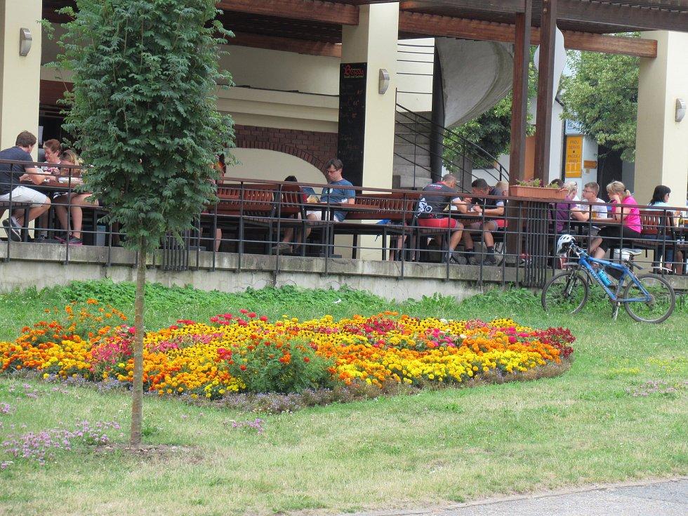 Veselí nad Lužnicí letos zdobí nejen Veselá kola, ale také nový liniový záhon v centru, betonové květníky a muškátová pyramida na náměstí.
