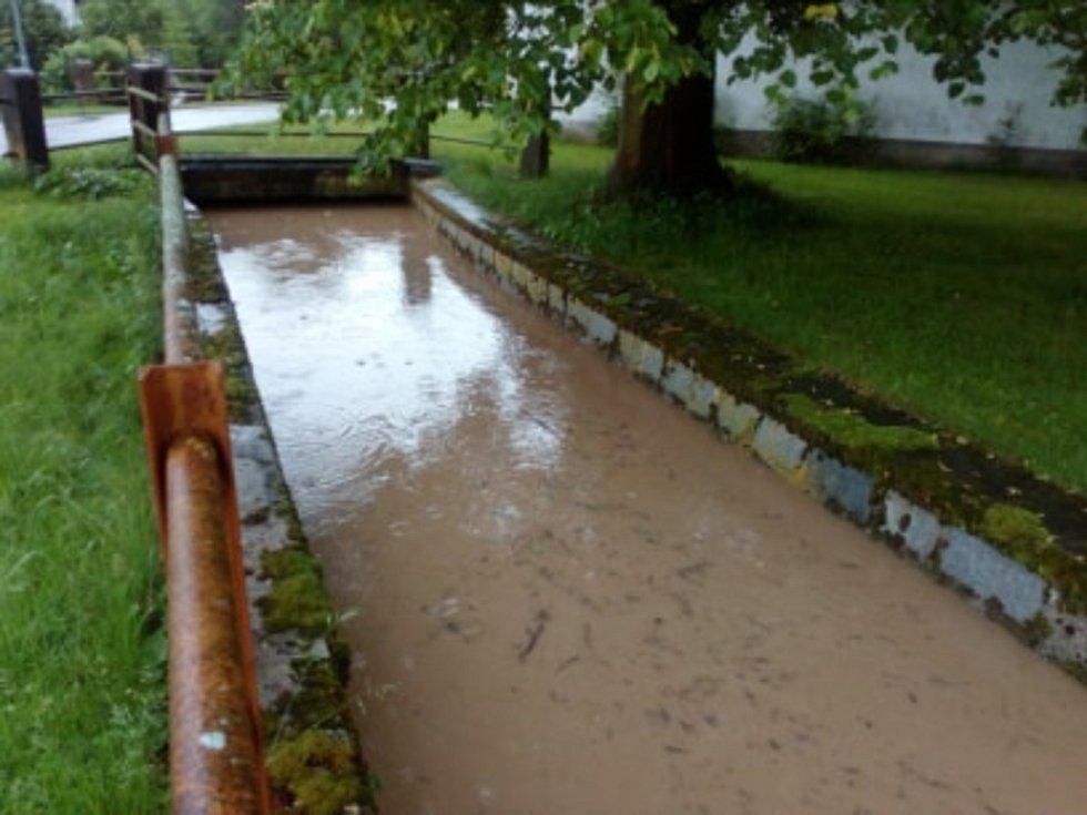 Svinenský potok v obci Sviny na Táborsku je plný.