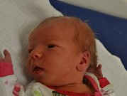Ema Novotná z Chotovin. Narodila  se rodičům Markétě a Alešovi 28. prosince v 11.40 hodin jako jejich první dítě. Její váha  byla 2960 gramů  a  míra 49 cm.