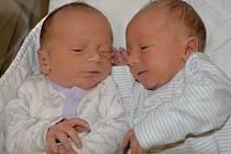 Jan a Petr Geciovi z Nových Lánů. První z dvojčátek přišel na svět 3. listopadu ve 13.06 hodin Petr (vpravo) a po narození vážil 2910 gramů. O dvě minuty později se narodil Jan s váhou 2900 gramů. Doma už chlapečkové mají tříletou sestřičku Martinku.
