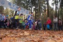 Známý kolorit Lesního běhu Pintovkou: příjemné prostředí, typické listopadové klima, příjemná atmosféra a maximální úsilí závodníků od nejmladších až po veterány.