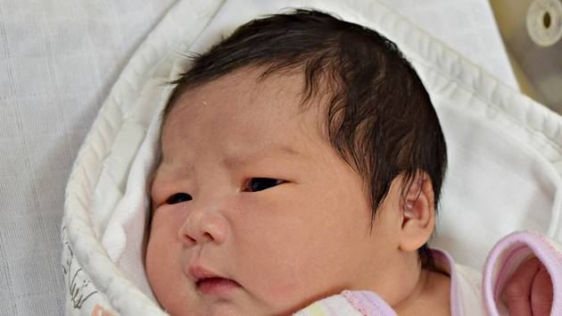 Ngoc Diep Nguyen z Tábora. Narodila se 15. ledna 2020 minutu po jedné hodině jako druhá dcera v rodině.Vážila 4150 gramů, měřila 52 cm a sestřičce Haničce je sedm a půl roku.