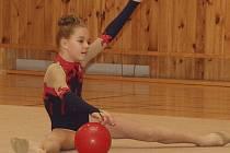 Špičková moderní gymnastika se v hale táborského gymnázia v minulých letech jaksepatří zabydlela. Letos slaví klání  závodnic z předních českých oddílů už sedmé narozeniny. V neděli se navíc koná oblastní přebor gymnastek v základním programu.