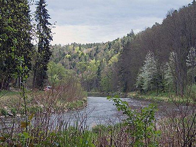 Řeka Lužnice. Ilustrační foto.