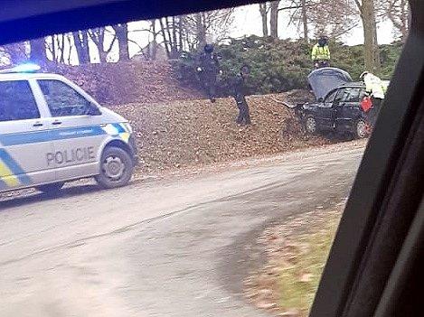 Řidič v Táboře ujížděl policistům, skončil ve stromě.