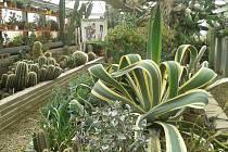 Botanická zahrada zve na Víkend otevřených zahrad