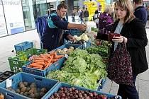 V Táboře začnou zítra ráno Havelské trhy