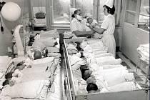 Porodnice v táborské nemocnici.