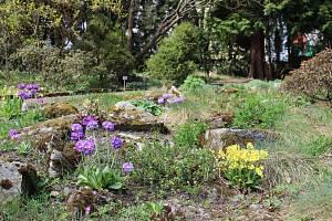 Botanická zahrada o víkendu otevře skleníky a nabídne komentovanou prohlídku.