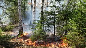 Požáry na Táborsku