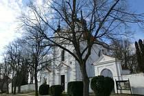 Stromořadí v Michalské ulici.