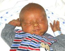 VÍTEK ŠVEC Z MALŠIC. Rodičům Marice a Radkovi se narodil 7. listopadu ve 4.12 hodin. Vážil 4000 g, měřil 51 cm a už má doma šestiletého brášku Tomáška.
