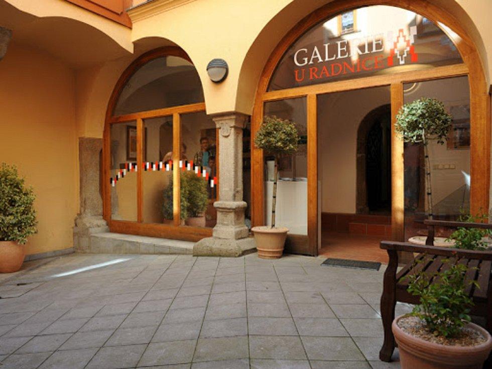 Výstavu si návštěvníci v Galerii U Radnice prohlédnou od 25. 5. do 24. 7. v rozšířené otevírací době.