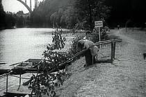 Bechyně - film Ryba na suchu.